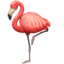 Whatsapp flamingo U+1F9A9